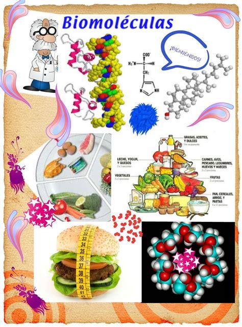 Libro Biologia Descargar Gratis pdf