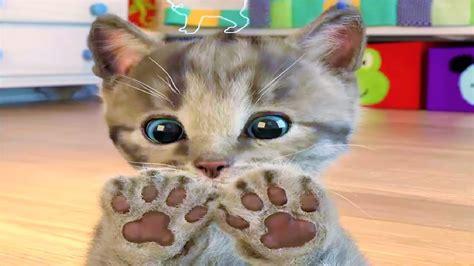 Liltle Kitten Cute Pet Care Fun, Baby Play With My ...