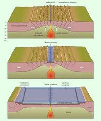 Límites divergentes   Biología y Geología