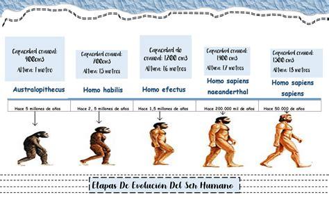 Linea de tiempo de ETAPAS DE EVOLUCIÓN del ser humano ...
