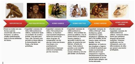 Línea del tiempo de la evolución humana