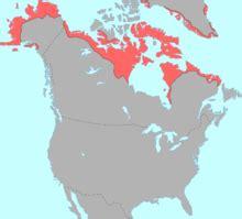 Línguas esquimó aleútes – Wikipédia, a enciclopédia livre