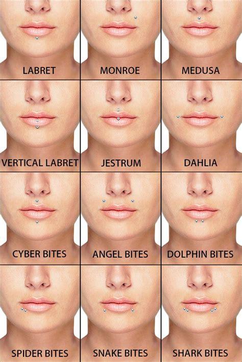 Lip Piercings Guide   Piercings, Facial piercings, Face ...