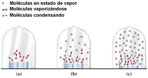 Líquidos y Sólidos.: Presión de vapor
