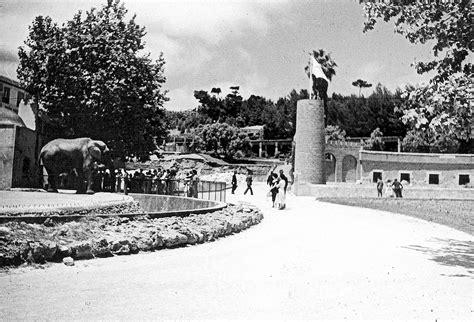 Lisboa de Antigamente: Jardim Zoológico de Lisboa