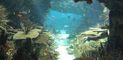 Lisbon Oceanarium  Estremadura, Portugal    aquarium in ...