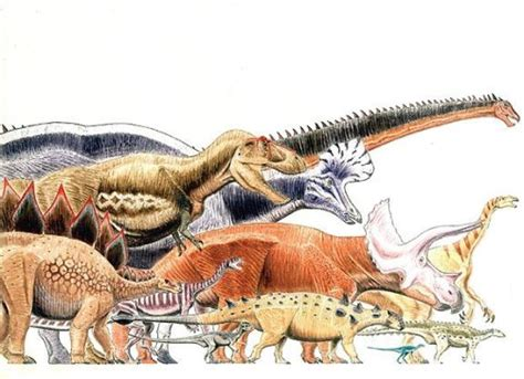 List of Dinosaurs | Cool Dino Facts Wiki | FANDOM powered ...
