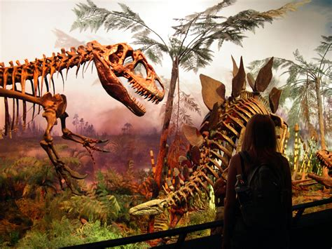 List of dinosaurs | Paleontology Wiki | FANDOM powered by ...