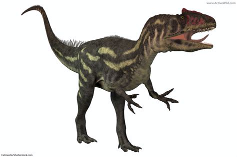 List Of Dinosaurs – Dinosaur Names With Pictures & Information