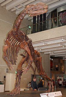 List of dinosaurs   Simple English Wikipedia, the free ...