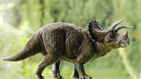 Lista de Dinosaurios con Cuernos