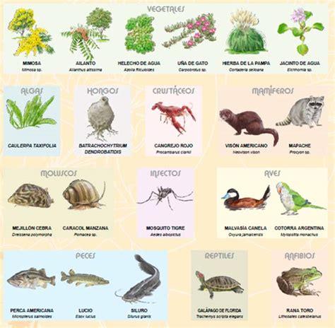Lista de especies exóticas invasoras a priorizar por la UE ...