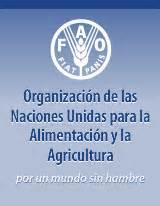 Logo: Organización de las Naciones Unidas para la ...