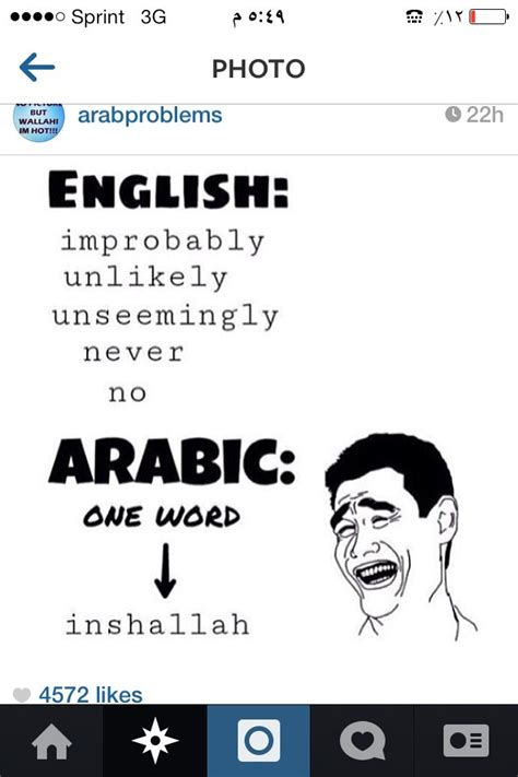 Lol Arab probs! | Some jokes, Funny facts, Funny quotes