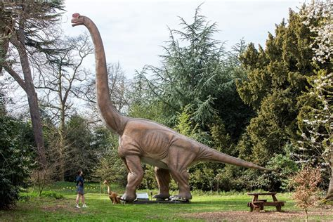 London is getting its own Jurassic park | London Evening ...