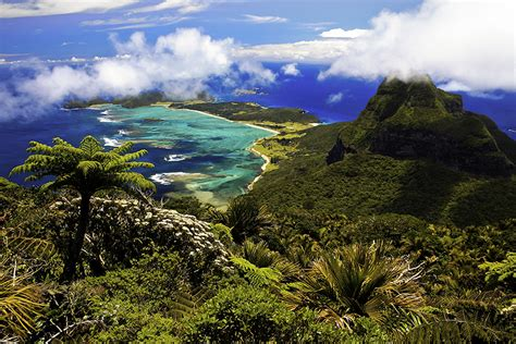 Lord Howe Island Scientific Expedition   Australian Geographic