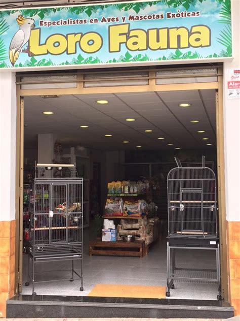 Loro Fauna Tienda de Animales Exóticos Tenerife ...