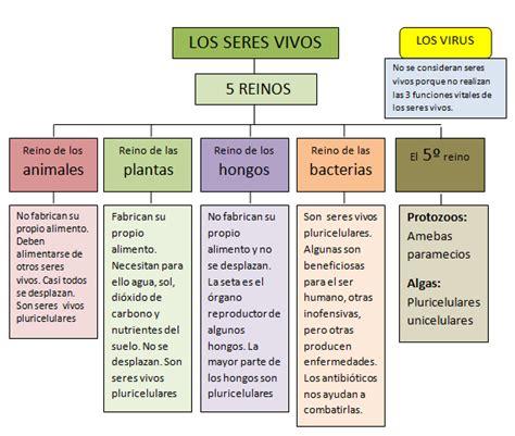 Los 5 Reinos de los Seres Vivos   Pino Flores classmates