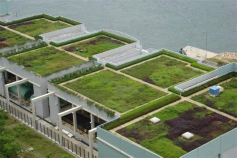 Los 6 más importantes beneficios de los techos verdes ...