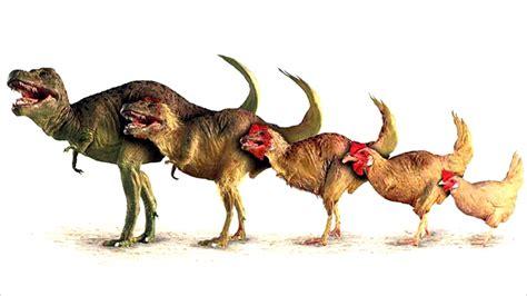los 9 dinosaurios mas raros que han existido en la ...