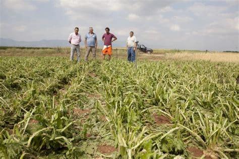 Los agricultores riojanos dedicaron 7,7 millones de euros ...