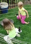 Los Angeles Birthday party pony and petting zoo rentals ...