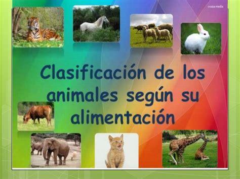 Los animales según su alimentacion