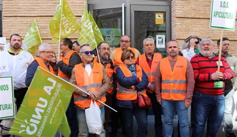 Los apicultores de La Unió denuncian  persecución y acoso ...