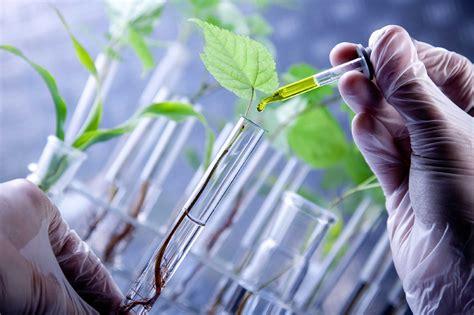 Los beneficios de la biotecnología | elcato.org