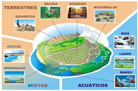 Los diferentes Tipos de Ecosistemas   Como Funciona Que