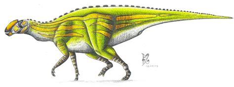 Los dinosaurios de México: su historia contada por huesos ...
