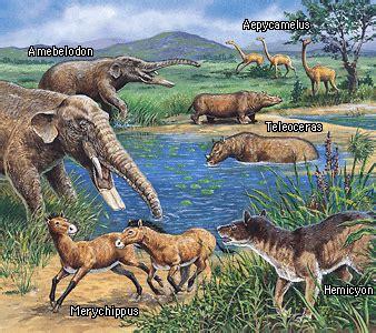 Los dinosaurios y la vida prehistórica: ERA CENOZOICA