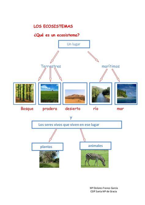Los ecosistemas definitivo 2