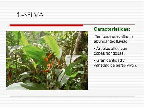 Los Ecosistemas.   ppt video online descargar