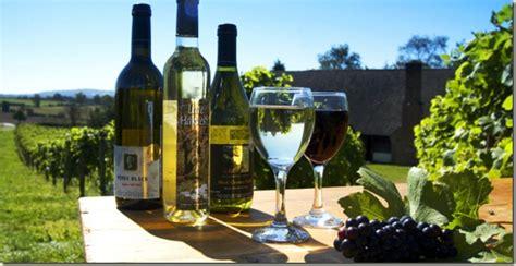 Los efectos beneficiosos del Cambio Climático en el vino ...