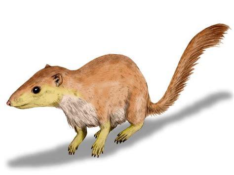 Los mamíferos plantaron cara a los dinosaurios