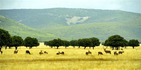Los mayores de Alalpardo visitan el Parque Nacional de ...