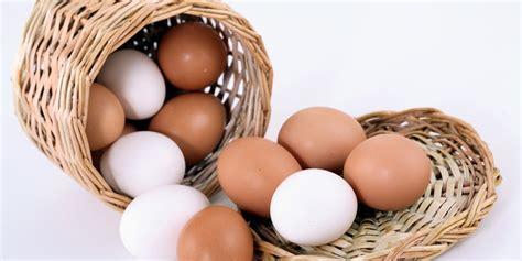 Los mejores huevos según calidad   precioComerco Cash & Carry