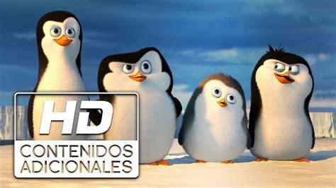 Los Pinguinos De Madagascar Online Espanol Espana   ver ...