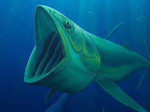 Los primitivos peces filtradores de agua se extinguieron ...