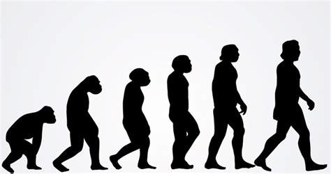 Los problemas de la evolución teísta   Observatorio del ...