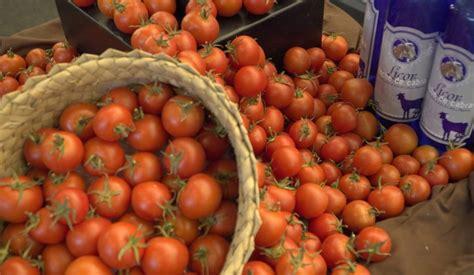 Los productores hortofrutícolas canarios, entre el ...