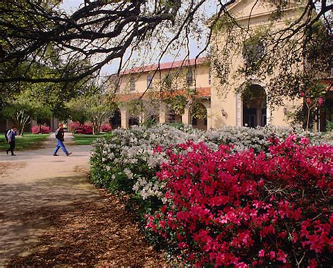 Louisiana State University   Best Colleges Online