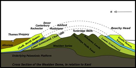 Lower Cretaceous   Simple English Wikipedia, the free ...