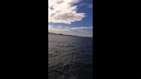 Lubina a curricán en el mar menor   YouTube
