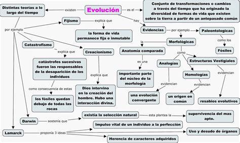 Lucia Convertini: Evidencias de la Evolución