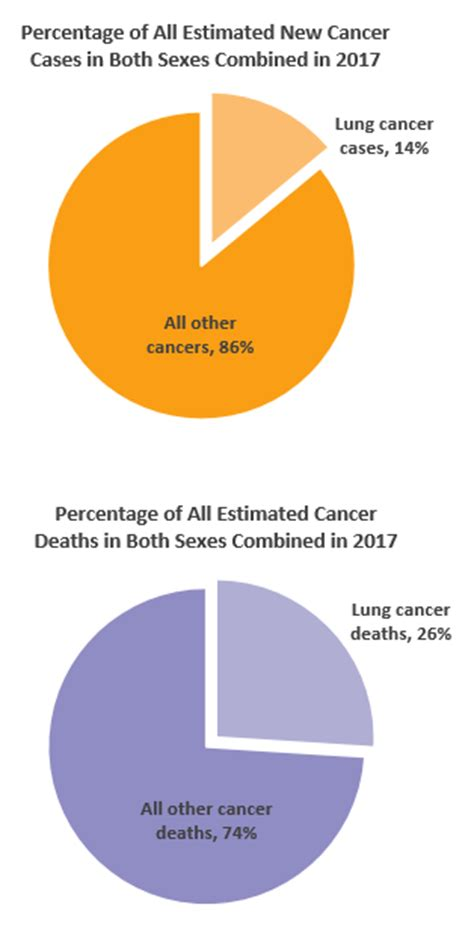 Lung cancer statistics   Canadian Cancer Society