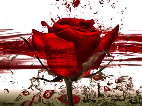 M de mimar: Leyenda de Sant Jordi 23 de Abril