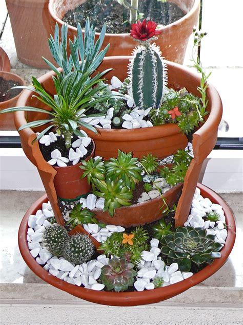 Macetas originales | Jardim de suculentas, Minijardins e ...