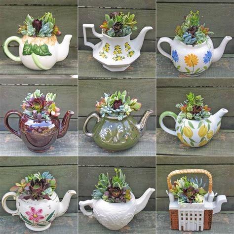 macetas originales | Plantas, Plantas en maceta ...